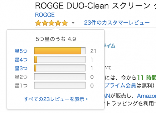 ROGGE DUO Clean review