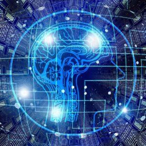 第二の脳とは?その特徴と作り方は?なぜ今必要なのか?