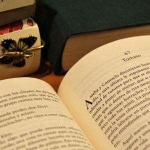 電子書籍より紙の本で読書した方が知識は定着しやすい!電子書籍と紙の本の使い分けについて